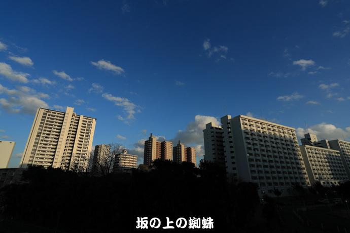 -01-1DXL9858LR-1.jpg