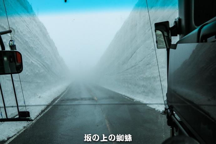 01-IMG_0423-2LR-1.jpg