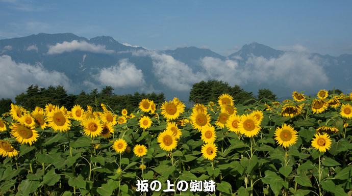 03-DSC03051-LR.jpg