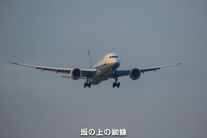 05-TACK9195-2LR-1.jpg