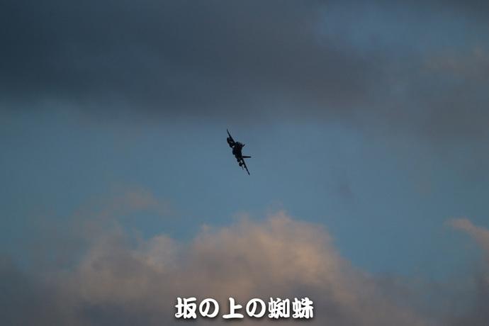 06-E1DX8052-LR1.jpg