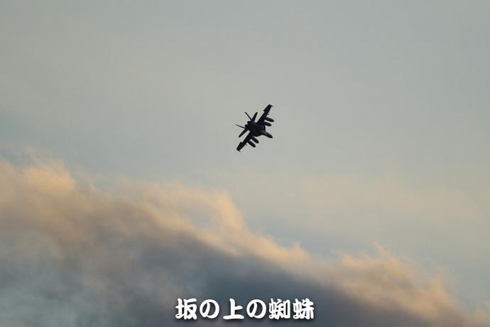 07-E1DX8090-LR1.jpg