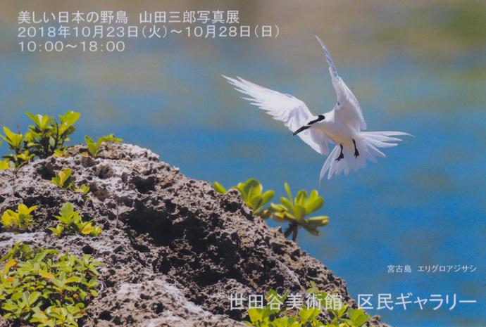 スキャン 1LR-1.jpg